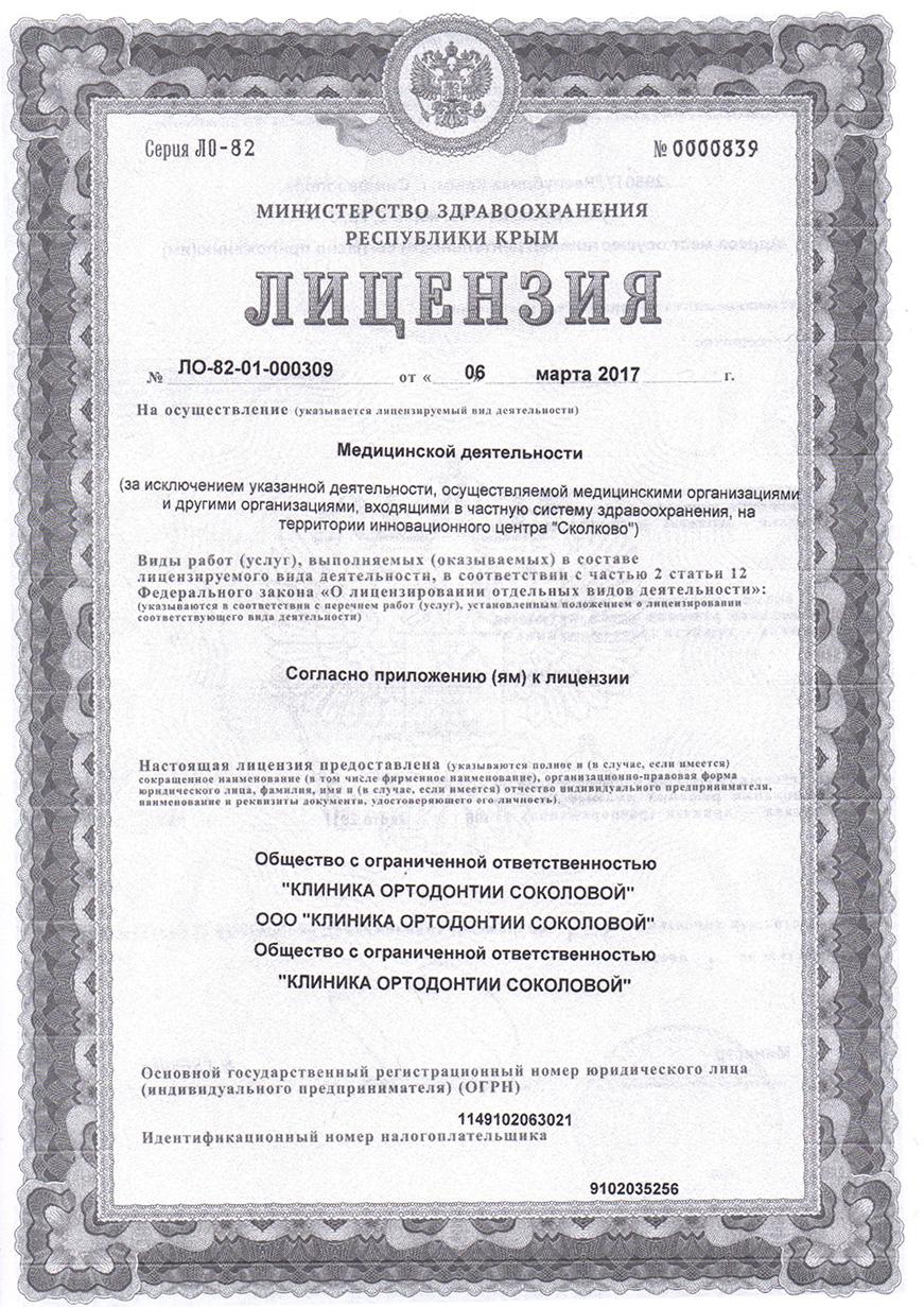 лицензия 1 лист